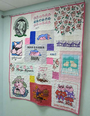 Quilt hung using IKEA hanging system