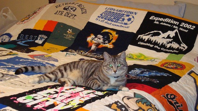 Cats love T-shirt Quilts