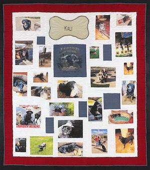 A Dog's Life 300.jpg