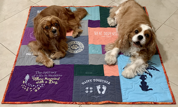 Dogs on a Too Cool T-shirt Quilt