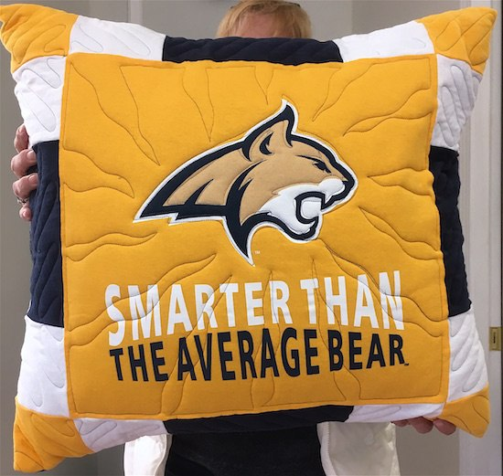 college T-shirt pillow